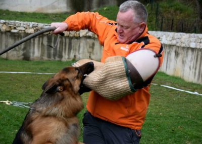 Training in Kennel Belona